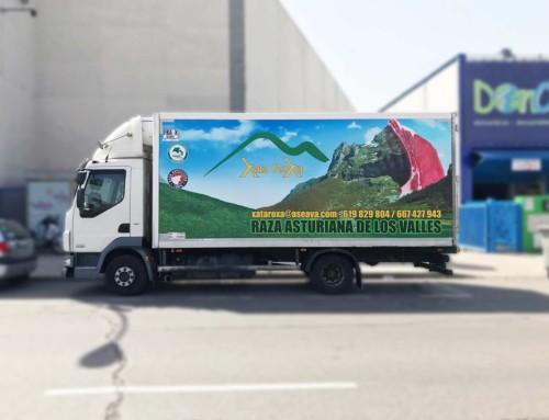 Rotular camión